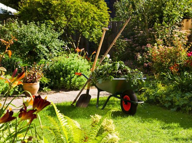 Entretien jardin toulouse lagage d broussaillage for Contrat entretien jardin